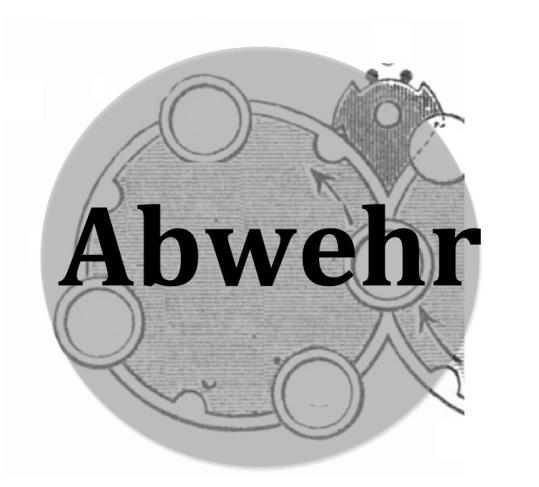 Abwehrmasch